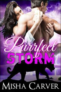 Purrfect Storm