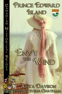 Envy the Wind