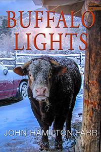 Buffalo Lights: Maryland to New Mexico