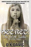 Secret in Wolf Lake