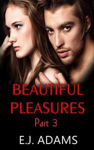 Beautiful Pleasures Part 3