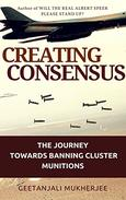 Creating Consensus: The Journey Towards Banning Cluster Munitions