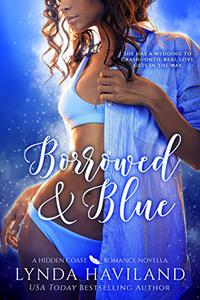 Borrowed & Blue: A Hidden Coast Romance Novella