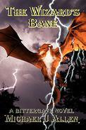 The Wizard's Bane: A Contemporary High Fantasy Adventure