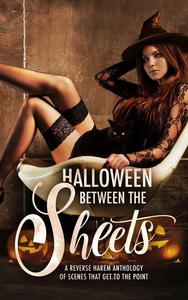 Halloween Between the Sheets: A Reverse Harem Anthology of Scenes that Get to the Point