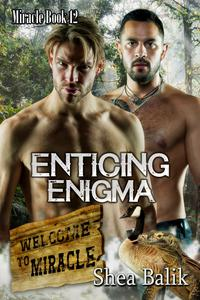 Enticing Enigma, Miracle 12