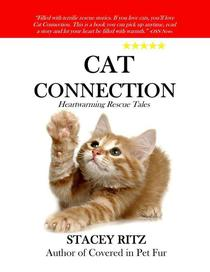 Cat Connection: Heartwarming Rescue Tales