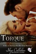 Torque: A Sins of Ashville Bad Boy Dark Romance