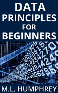 Data Principles for Beginners