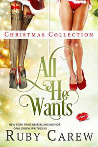 All He Wants Christmas Collection: Erotic Holiday Stories