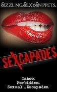 Sexcapades:  Sizzling.Sexy.Snippets: 11 Taboo, Forbidden, Sexual Escapades Scenes