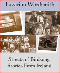 Streets Of Birdsong  Stories from Ireland