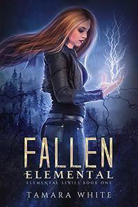 Fallen Elemental: A Reverse Harem Story