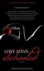 Love Slave: Schooled