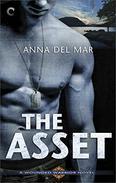 The Asset: A Military Hero Romantic Suspense Novel