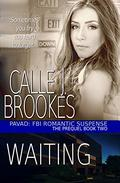 Waiting: A PAVAD: FBI Prequel