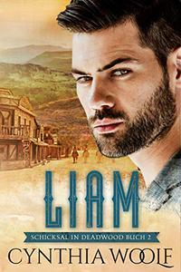 Liam, Schicksal in Deadwood, Buch 2 (Shicksal in Deadwood)