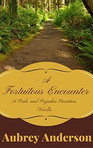 A Fortuitous Encounter: A Pride and Prejudice Variation Novella