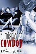 A Misplaced Cowboy: A Short Erotic Romance