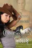 Colton's Folly