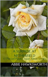 A Surprise at Netherfield: A Pride and Prejudice Sensual Intimate Variation
