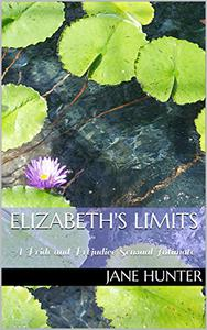 Elizabeth's Limits: A Pride and Prejudice Sensual Intimate