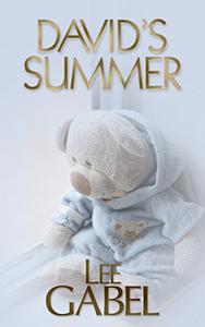 David's Summer
