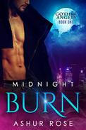 Midnight Burn: a New Adult Paranormal Romance Novel
