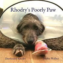 Rhodry's Poorly Paw