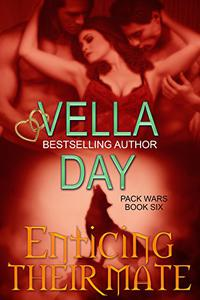 Enticing Their Mate: Military Werewolf Shifter Romance