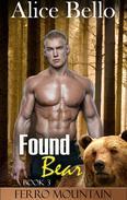 Found Bear: Ferro Mountains (Book 3)