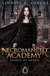 Necromancer Academy: Book 1