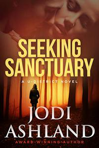 Seeking Sanctuary: Mystery Romance