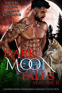 Dark Moon Falls: Volume 2