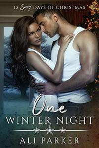 One Winter Night: A Sexy Bad Boy Holiday Novel
