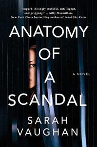 Anatomy of a Scandal: A Novel