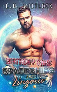 Birthday Cake, Spaceships and Lingerie: A sci-fi romance adventure