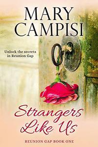 Strangers Like Us: A Small Town Family Saga