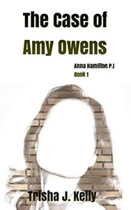 The Case of Amy Owens: Anna Hamilton Mysteries
