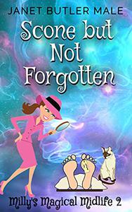 Scone but Not Forgotten: A Women's Paranormal Witty Mystery