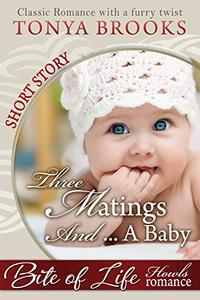 Three Matings And A Baby: A Howls Romance