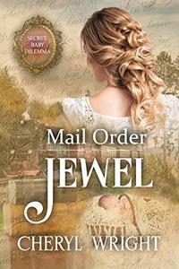 Mail Order Jewel: Secret Baby Dilemma Book 1