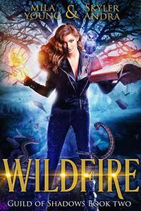 Wildfire: A reverse harem paranormal romance