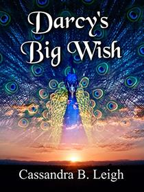 Darcy's Big Wish