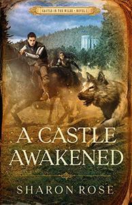 A Castle Awakened: Castle in the Wilde - Novel 1