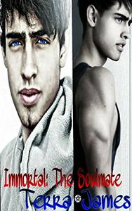 Immortal: The Soulmate: Book 2 in the Immortal Series
