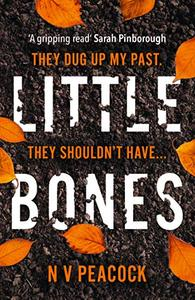 Little Bones: The most chilling serial killer thriller you'll read this year