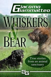 Whiskers and Bear