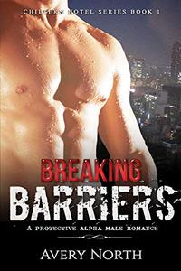 Breaking Barriers: A Protective Alpha Male Romance