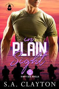In Plain Sight: A Lady Boss Press Navy SEAL Novella